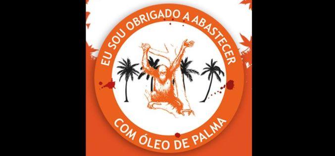 Ambiente | Combustíveis portugueses comprometem cada vez mais florestas e espécies em extinção