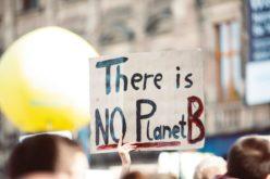Ambiente | Gerações tem 'cidadãos mais verdes' em 2020