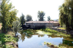 Ambiente | Agência Portuguesa do Ambiente (APA) investe na reabilitação e valorização do rio Este