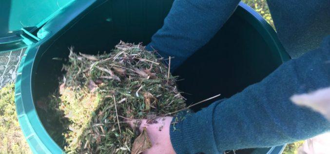 Reciclagem | 'Devolver à Terra' implementa compostagem de resíduos orgânicos em escolas