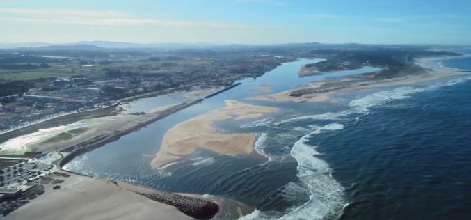 Mar | Esposende empenhado na preservação do património natural marinho