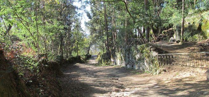 Caminhar | Andar pelas montanhas de Braga até à nascente do rio Este