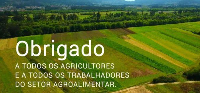 Agricultura | Governo lança medidas para apoiar agricultores e consumo de produtos locais