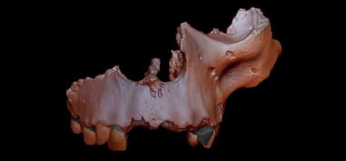História | Mais antiga evidência genética de sempre esclarece controvérsia sobre ancestrais do Homo sapiens