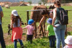 Comunidade | Famalicão em Transição prepara Centro Comunitário