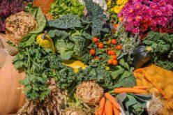 Agricultura | Produtores de fruta e hortícolas solicitam ajuda à União Europeia
