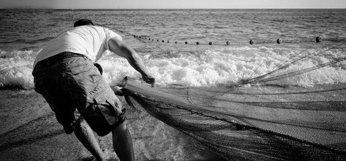 Pesca | Estão a terminar candidaturas ao Portugal 2020 para compensar despesas adicionais motivadas pela Covid-19