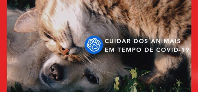 Animalia | Petify e Animalar unem esforços para combater dificuldades causadas pela Covid-19