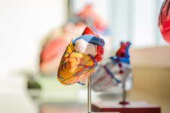 Coronavírus | Doença cardiovascular é a comorbilidade com maior risco de mortalidade por Covid-19
