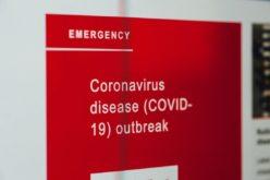 Saúde | Estão a ser desenhadas 70 vacinas para combater a Covid-19