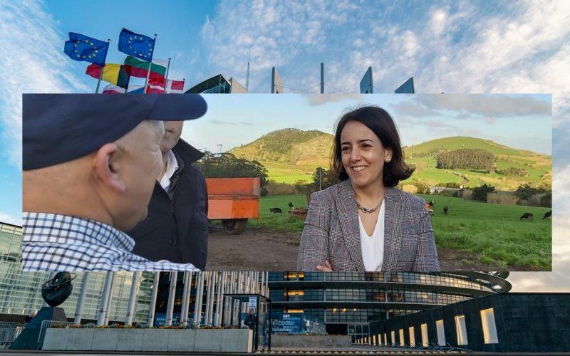 Agricultura | Isabel Estrada Carvalhais considera que estratégia para o setor agrícola e agro-alimentar exige relevância e meios reforçados