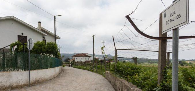 Urbanismo | Santo Tirso investe na pavimentação de ruas em terra batida