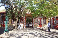 Comércio | Feira Semanal e Mercado Rural de Vila de Conde reabrem ao público