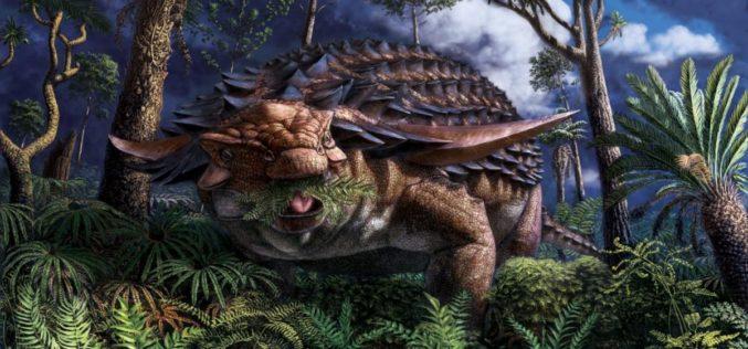 Paleontologia | Cientistas descobrem a alimentação de um dinossauro com mais de 100 milhões de anos