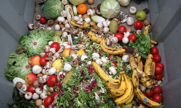 1024px-Trashed_vegetables_in_Luxembourg GFDL