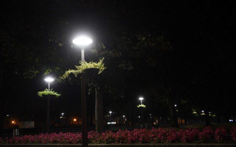 Energia | Famalicão poupa 40 por cento na iluminação pública com eficiência energética