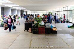 Comércio   Guimarães isenta taxas de ocupação do Mercado Municipal e da Feira Retalhista
