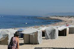 Ambiente | PAN limpa praia Suave Mar em Esposende