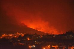 Floresta | Dez concelhos do distrito de Braga continuam sem Plano contra Incêndios Florestais atualizado