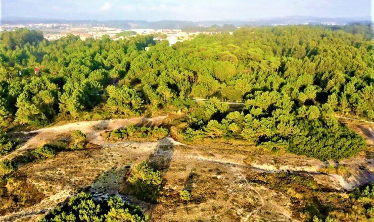 Vítor Gonçalves - ROM Vila do Conde 88_o
