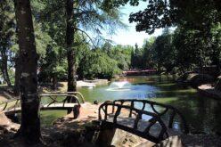 Verão | 'Ventilador' refresca noites bracarenses no Parque da Ponte