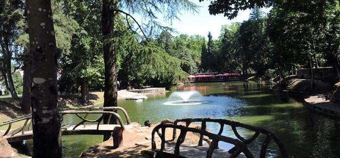 Verão   'Ventilador' refresca noites bracarenses no Parque da Ponte