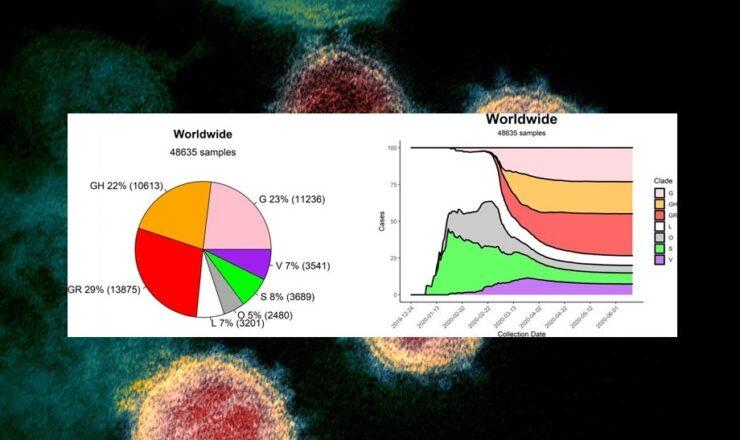 sarcov 2 mutações genéticas by niaid plus unibo ec66