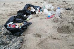Ambiente   Apúlia com lixo espalhado um pouco por todo o território