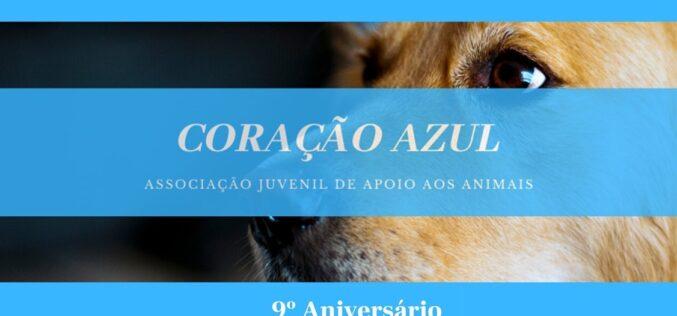 Animalia | 'Coração Azul' assinala 9 anos a cuidar de animais maltratados ou abandonados