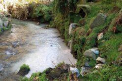 Ambiente | Rio Este recebe mais uma descarga poluente em Braga