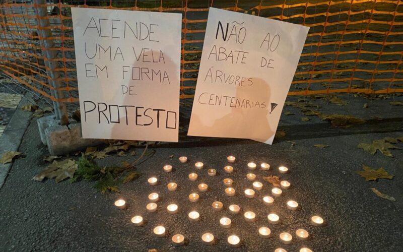 Urbanismo | Jovens manifestam-se contra abate de árvores em Famalicão