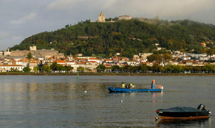 Viana do Castelo ABELO0278 2