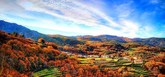 Viver | Meu querido mundo rural