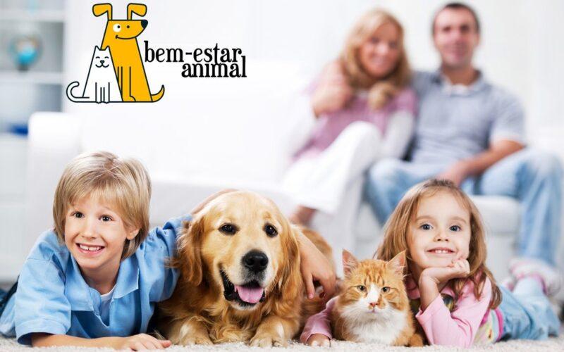 Animalia | Esposende promove esterilização de animais de companhia