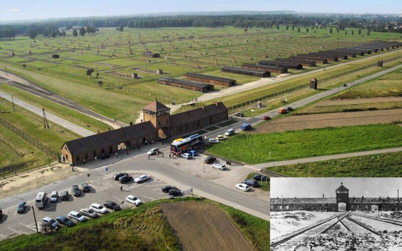 Criação   Já ninguém mora em Auschwitz