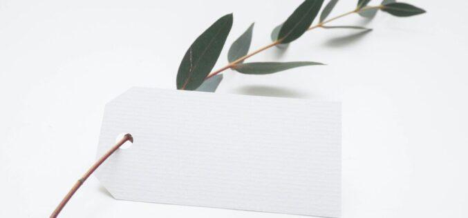 Sustentabilidade | DECO alerta consumidores para produtos mal rotulados como 'amigos do ambiente'