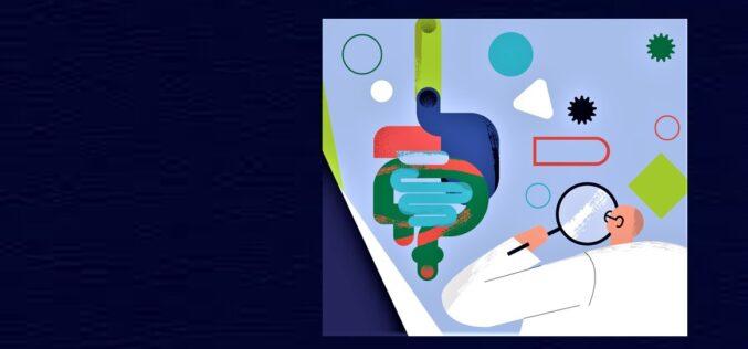 Saúde | Antibióticos impactam microbiota intestinal